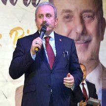 TBMM Başkanı Şentop: Türkiye'nin milli meselesinde siyasi görüş farkı olmaz